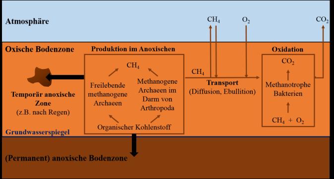methan-im-boden